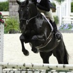 The 52nd Washington International Horse Show Begins Competition With Hunters