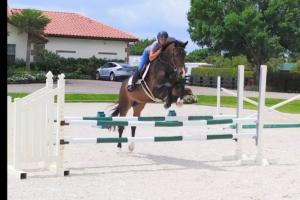 Intenzo schooling at RRF South 2