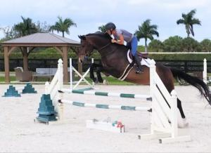 Intenzo schooling at RRF South 5