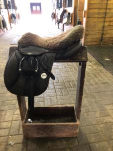 I love my new Meyer saddle and my horses do too! Their backs have never felt better!