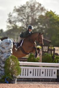 Phoebe Weseley, Tell Me More, WEF wk 2 2020, Adult Amatuer Hunter 3